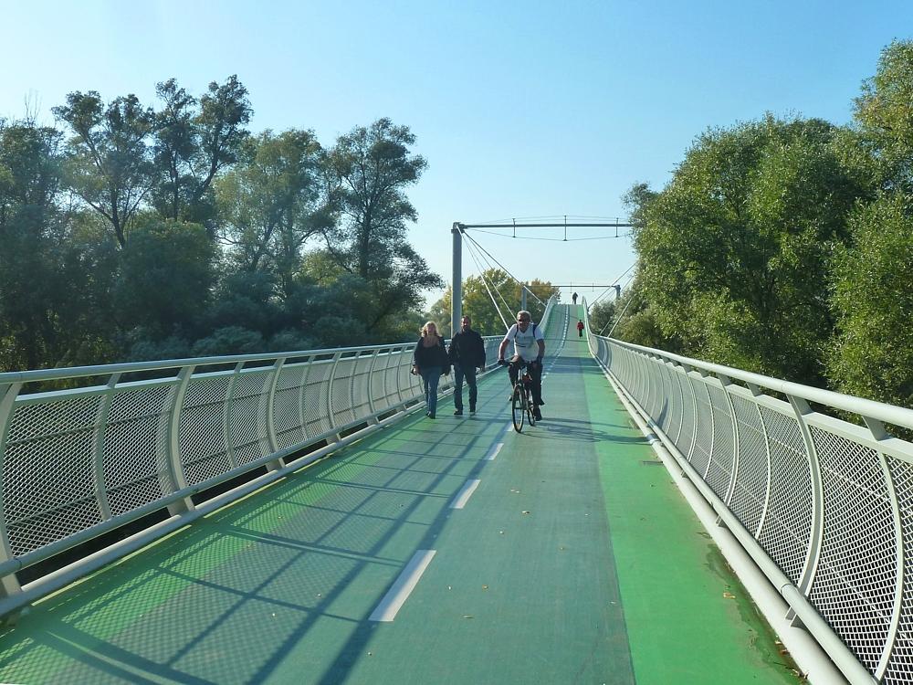 Most Chuck Norrisa láme rekordy návštevnosti