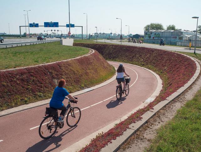 Ako úspešne budovať cykloinfraštruktúru v mestách- príklad z mesta Delft